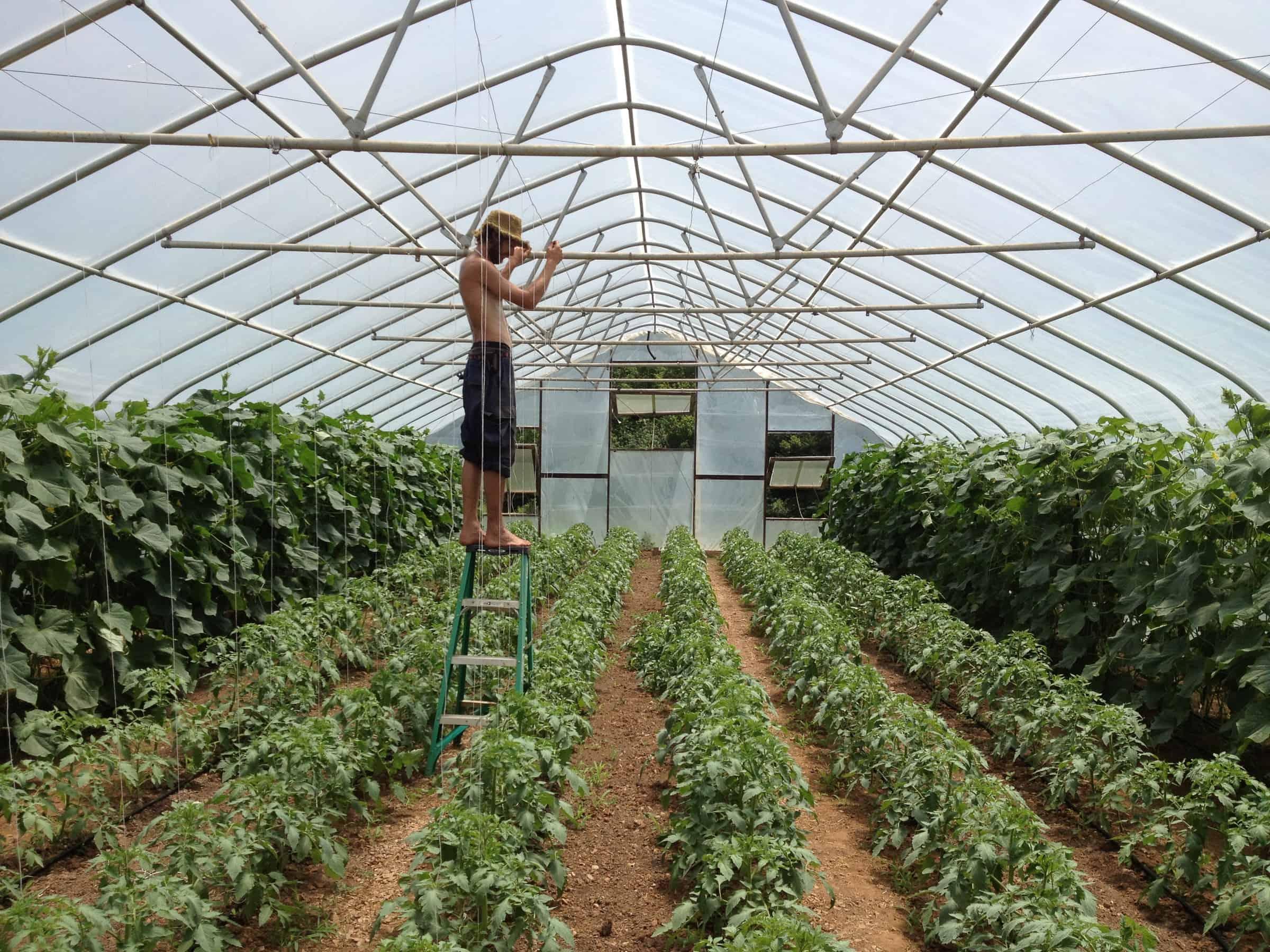 how to make a model farm